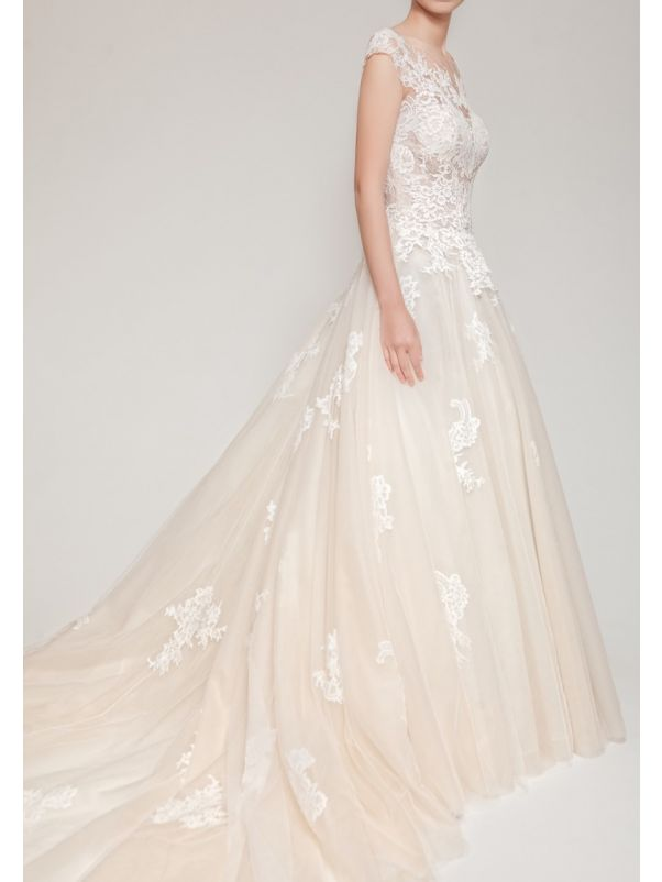 Lace Embroidered Tulle Ball Gown